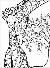 Giraffe Coloring Giraffes Pages Baby Mother Adult Printable Adults Tree Background Animal Mandala Drawings Justcolor These Sketches Animals Books Nature sketch template