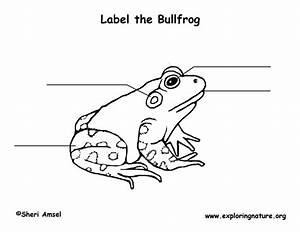 Bullfrog Labeling Page