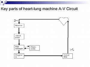 Automation Of Heart Lung Machine