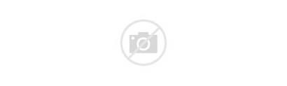 Gravity Phone Patented Winning Uses Award Mount