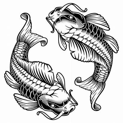 Koi Carp Vector Illustration Monochrome Fish Version