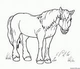 Horse Coloring Toy Walk Horses Pages sketch template