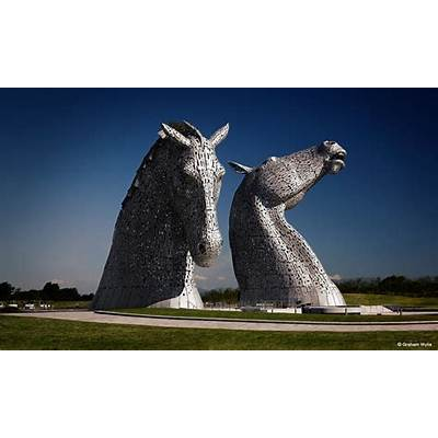 KelpiesAmerican-Scottish Foundation®