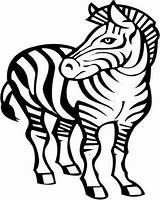 Zebra Drawing Coloring Awesome Head African Pages Draw Easy Clipartmag Zebras Playing Shark sketch template