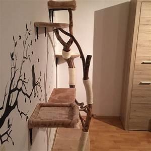 Kratzbaum Echter Baum : diy naturkratzbaum selber bauen interessantes f r katzenfreunde ~ Frokenaadalensverden.com Haus und Dekorationen