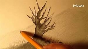 Cómo dibujar un árbol a lápiz paso a paso, cómo dibujar un árbol realista fácil a lápiz YouTube