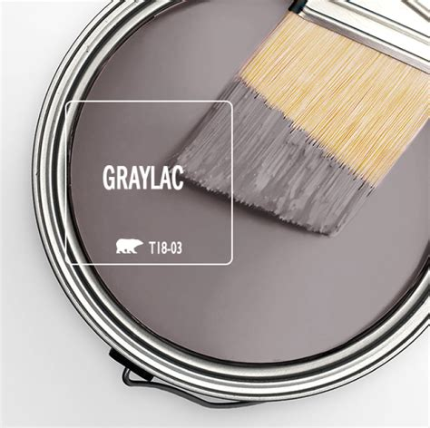 colorfully behr trend color spotlight graylac