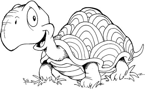 Tortoise coloring page coloring a tortoise which goes in