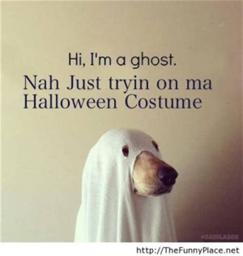 Quotes For Dogs For Halloween. QuotesGram