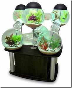 Idee Decoration Aquarium : id e d co aquarium vide ~ Melissatoandfro.com Idées de Décoration