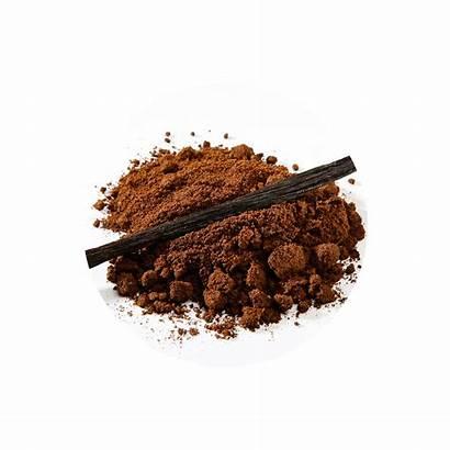 Vanilla Powder Moulue Vanille Organic Bio Raw