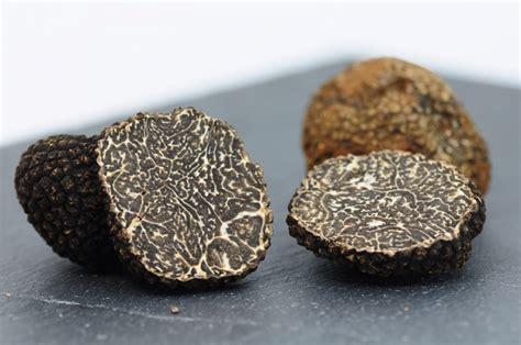 comment cuisiner les truffes noires comment bien choisir ses truffes noires en luberon