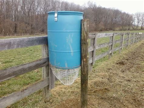 great strides hay barrel paddock paradise wiki horses