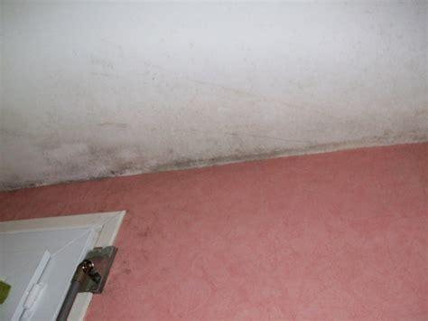 probleme moisissure chambre produit anti moisissure plafond 28 images traiter un