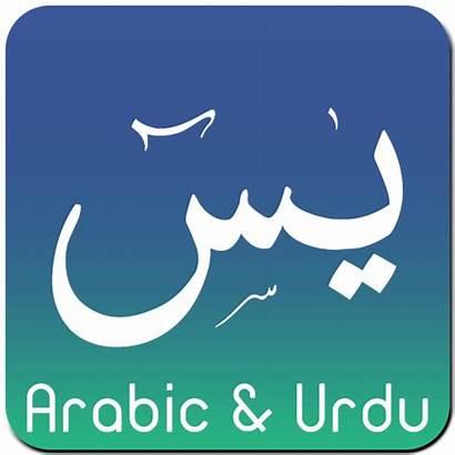Surah Yaseen Arabic Audio Urdu Android Verse