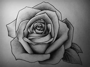 25+ Best Ideas about Rose Drawing Tattoo on Pinterest ...