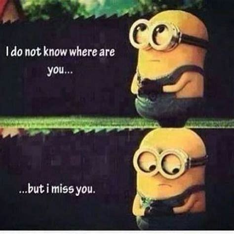 Where Are You Meme I Do Not Where Are You But I Miss You Pictures