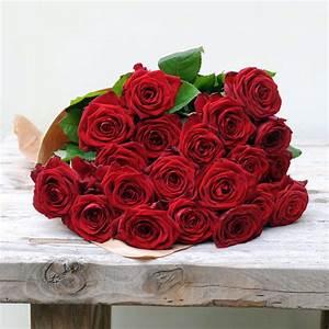 Gelb Rote Rosen Bedeutung : rote rosen 20 ~ Whattoseeinmadrid.com Haus und Dekorationen