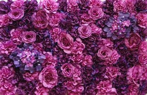 perth flower walls photobooth  perth