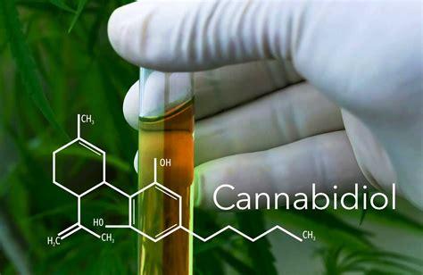 clinical trial  cannabidiol effect  hyperphagia