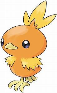 Normal Baby Weight Chart Torchic Pokédex Stats Moves Evolution Locations