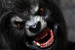 Forever 21 Store in Florida Robbed by a Werewolf   The ...