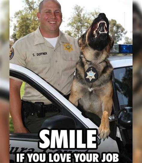 Law Dog Meme - 30 police memes that ll make you smile http uniformstories com articles humor category 30