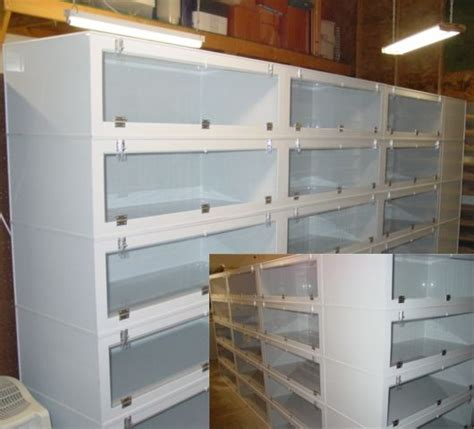 reptile rack system 8 best images about reptile racks on iguana