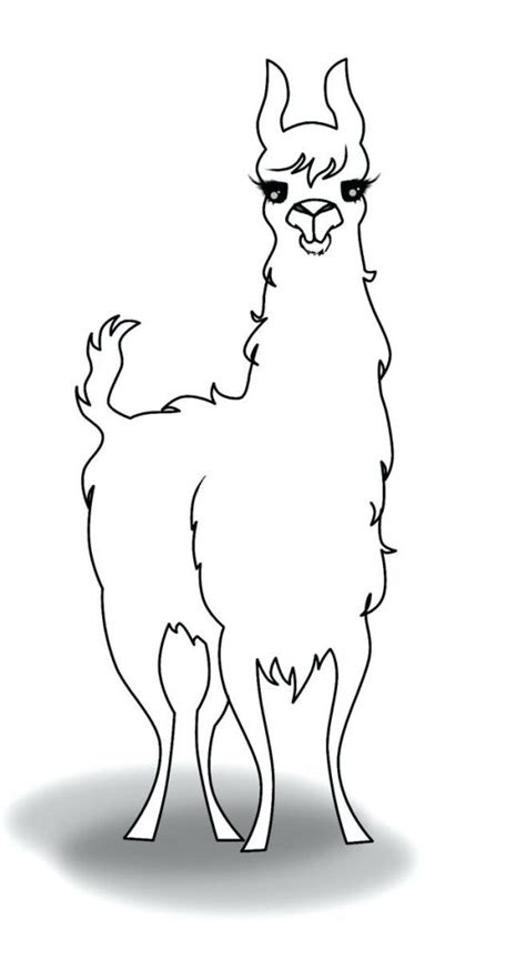 llama coloring pages  coloring pages  kids