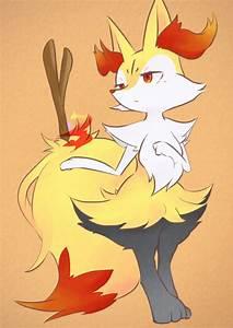Braixen Pokemon Evolution Images | Pokemon Images