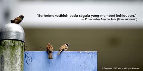 Quotes Pecinta Alam Romantis