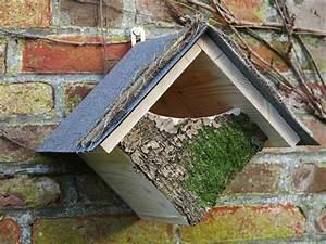 Vogelfutterhaus Selber Bauen Mit Kindern : vogelnest selbstgemacht selber machen heimwerkermagazin ~ Lizthompson.info Haus und Dekorationen