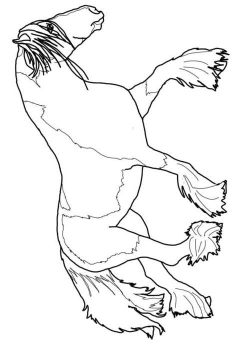immagini cavalli da colorare e stare disegni da colorare cavalli disegni da colorare di cavalli