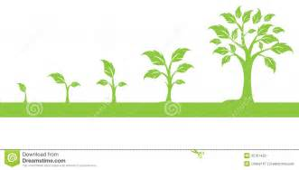 Growing Tree Clip Art