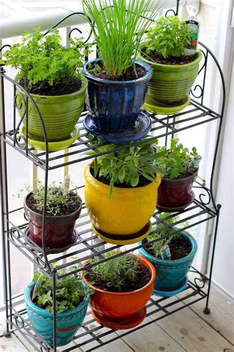 Grow Your Very Own Container Garden  My Decorative