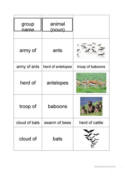 23 free esl nouns collective nouns team class family committee worksheets