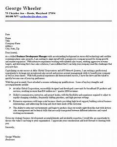 professional cover letter for a job