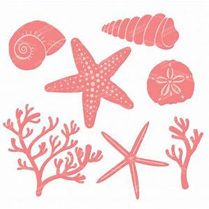 Mint & Coral Seashell Clipart