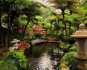 Plantes Pour Jardin Japonais Exterieur : jardin japonais et d co zen en 15 id es d 39 am nagement ~ Premium-room.com Idées de Décoration