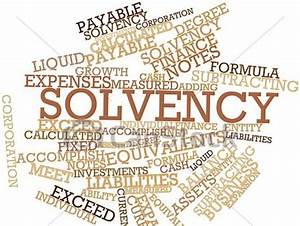 Image Gallery Solvency Ratio