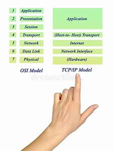 Osi Reference Model And Tcp  Ip Model Layers Stock Image