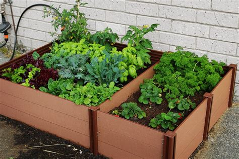 Grow Your Own Vegetables With A Raised Garden Bed