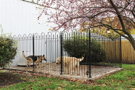 wrought iron  sided dog kennel  enclosure package