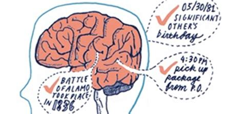 Boost Your Brain Power 7 Tips For Improving Your Memory