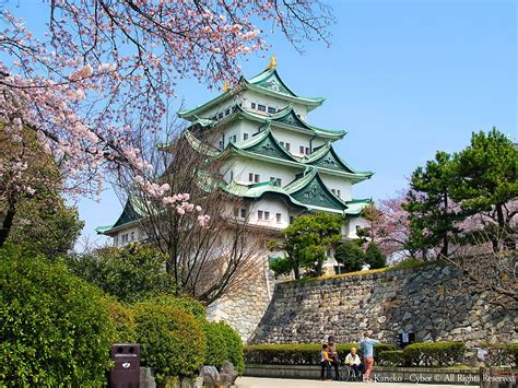 filenagoya castle  cherry blossoms  mar