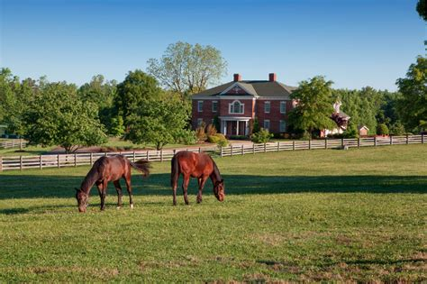 horse north farms carolina farm nc ranch county guilford ranches land road horses buyers successful legacy horn estate four equestrian
