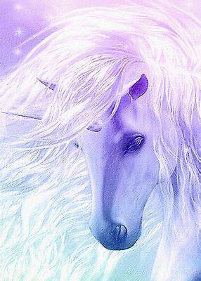 beautiful unicorn childrens fantasy horse canvas