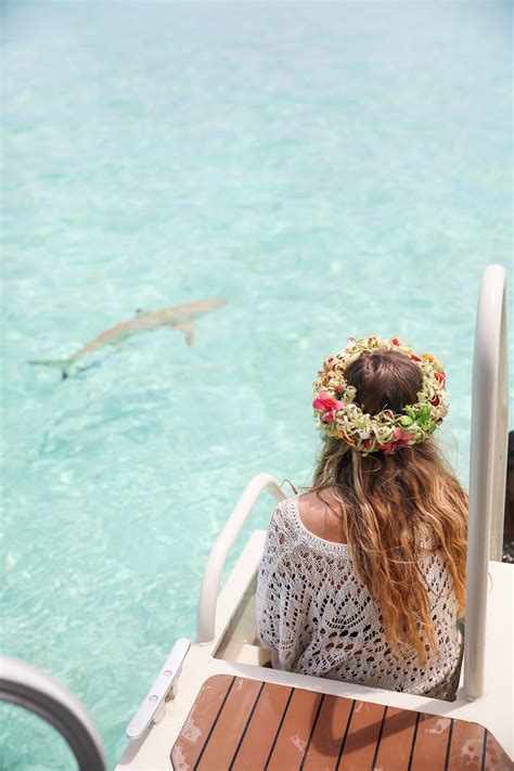 Swimming With Sharks And Sting Rays Bora Bora French