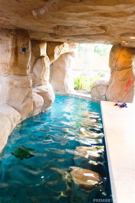 freeform custom pool  grotto cave  gilbert arizona