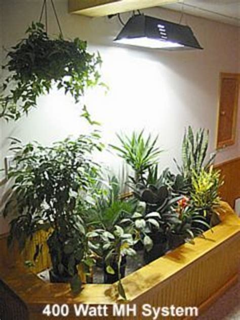 1000 ideas about grow lights for plants on